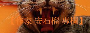 繪本作家【安石榴】專欄