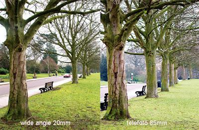 efek focal length lensa