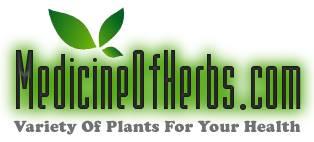 Medicine of Herbs
