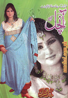 anchal-digest-january-2013-pdf.JPG
