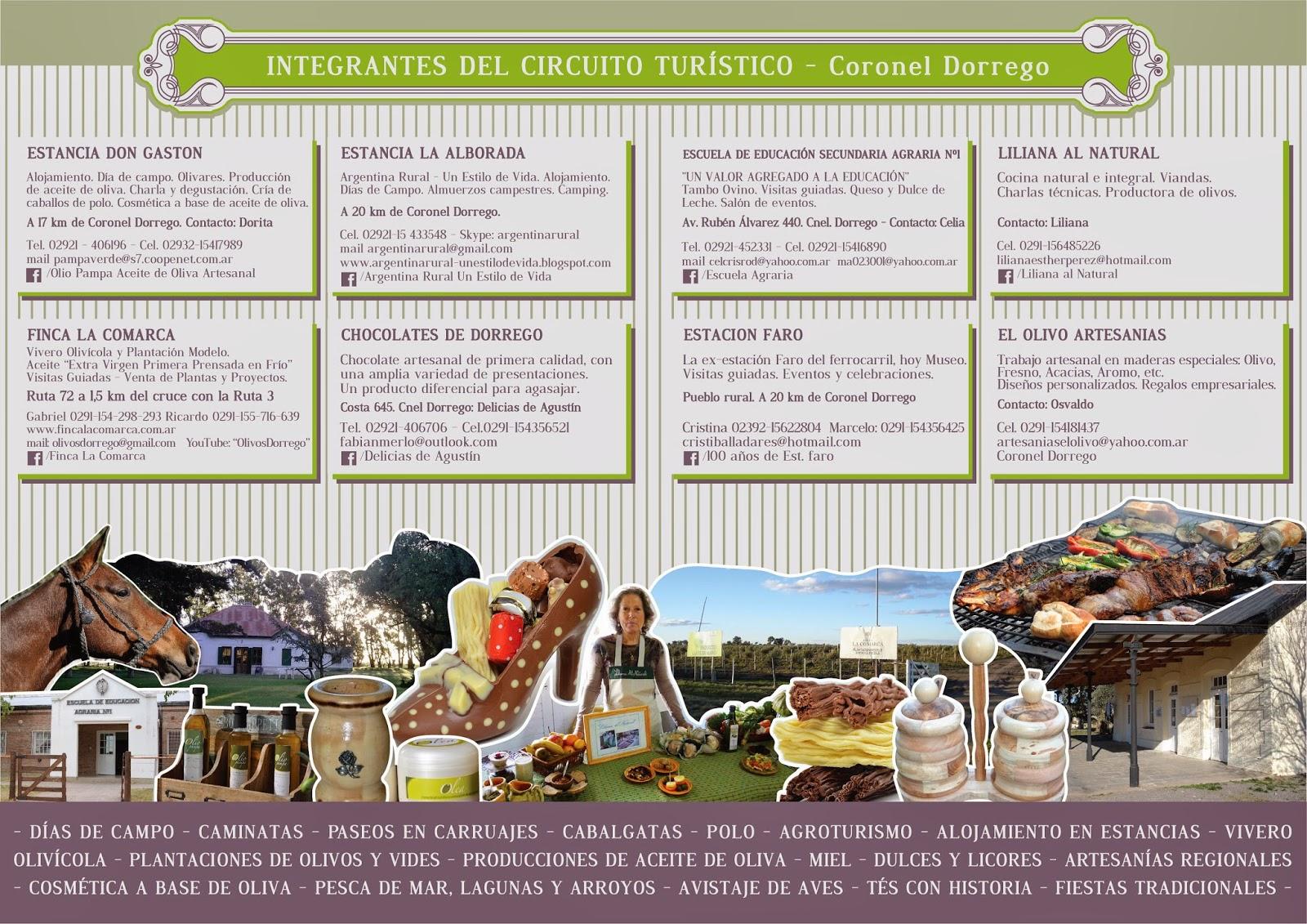 Circuito Turistico : Circuito turistico los olivares