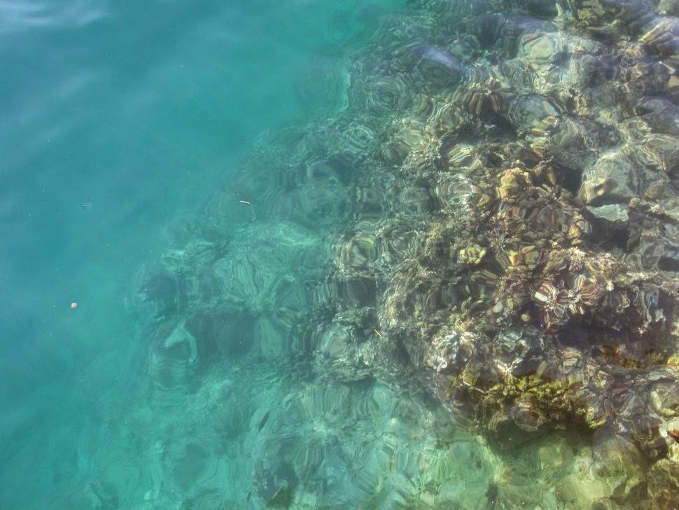 Lagon Baie de Cook Moorea