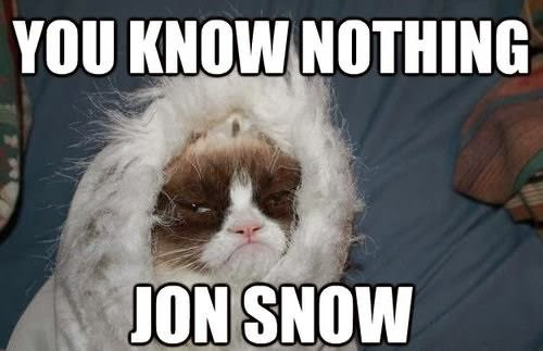 grumpy cat you know nothing