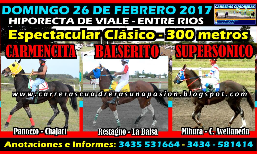 VIALE - CLASICO 300