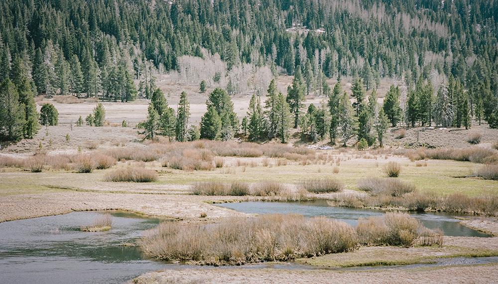 landscape near Sierraville, California