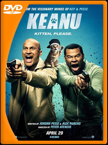 Keanu (2016) DVDRip Latino