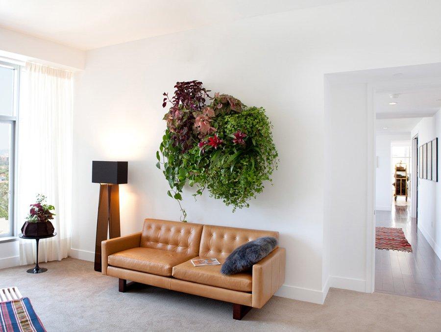 Cuadros vegetales lienzos naturados