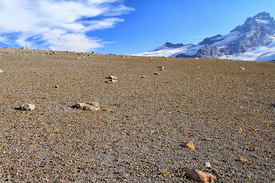 Pumice Landscape on Burroughs Mountain