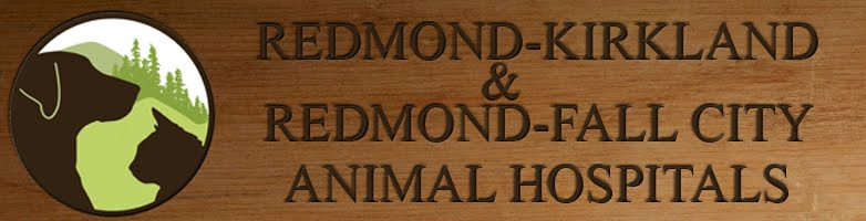 Redmond-Kirkland/Fall City Animal Hospitals
