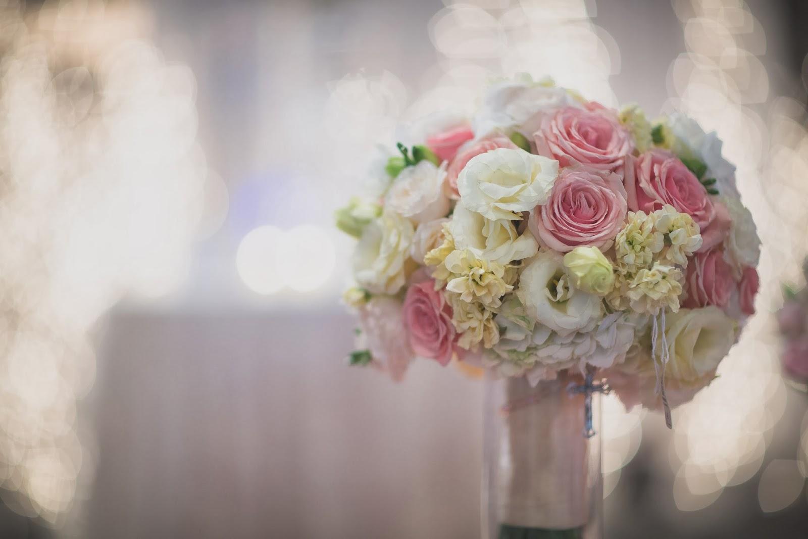 Jason Switzer graphy Viviano s Bridal Extravaganza 2014