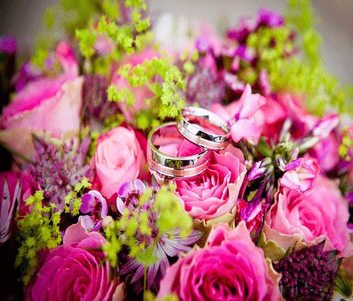 rosas y alianza