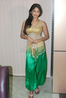 WWW..BLOGSPOT Actress Vijayalakshmi at BIG Salute to Tamil Women Entertainers Awards Pictures Posters Wallpapers Pic Stills Image Gallery 0010