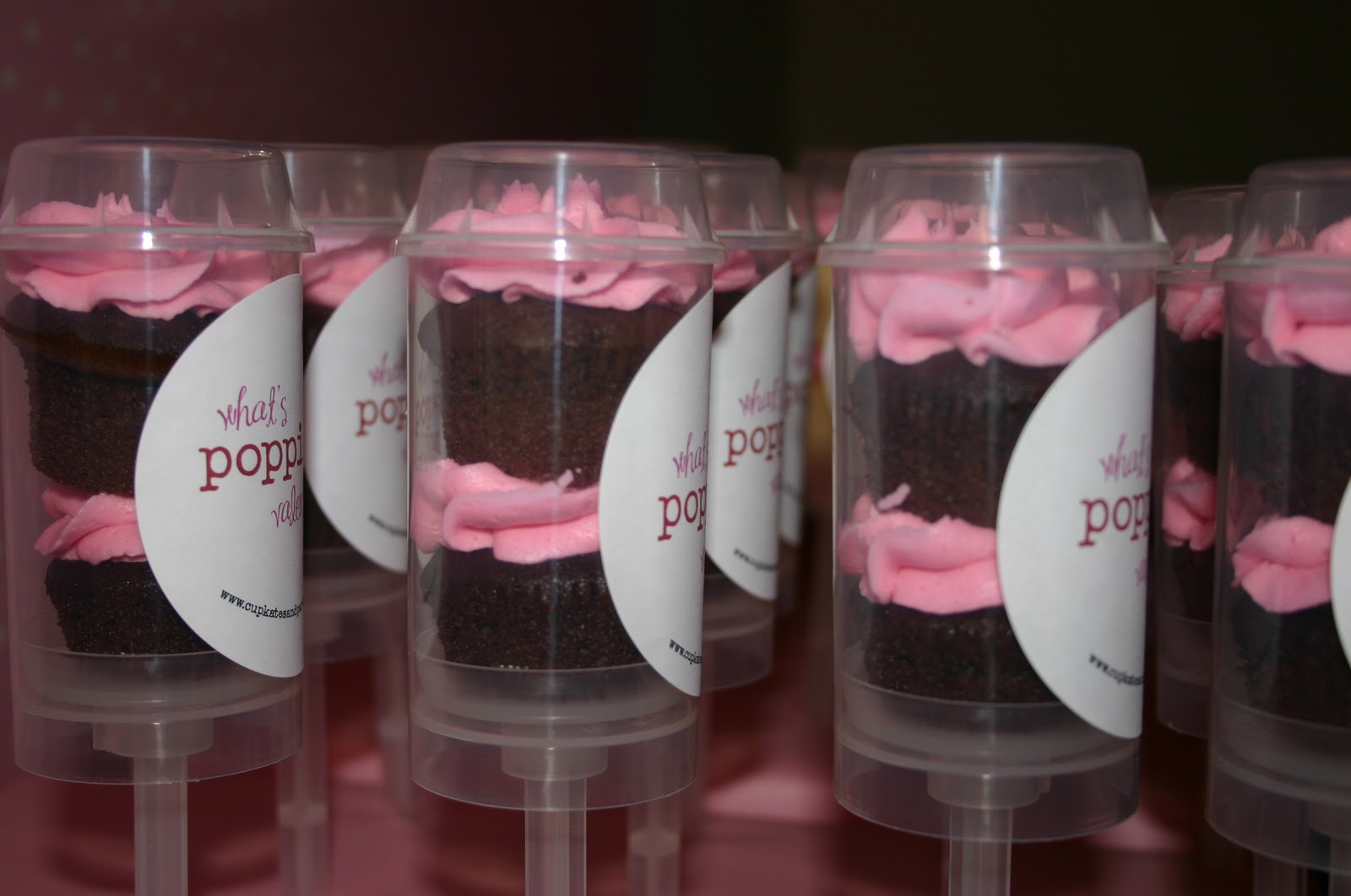 Where To Buy Cake Push Pop Containers