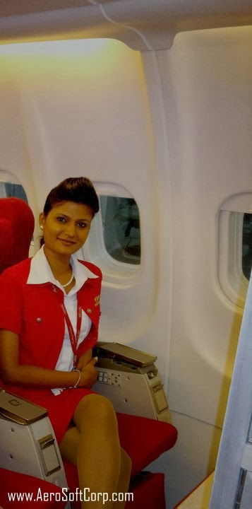 Order for Cabin Crew Career Guide