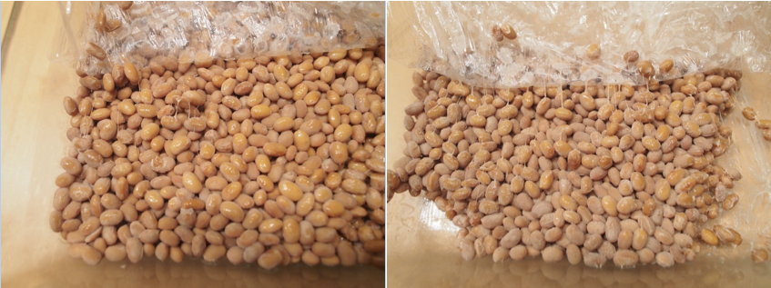 how to cook frozen natto