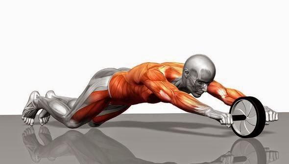 「腹筋トレーニング」の画像検索結果