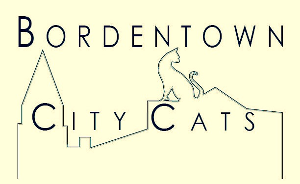 Bordentown City Cats