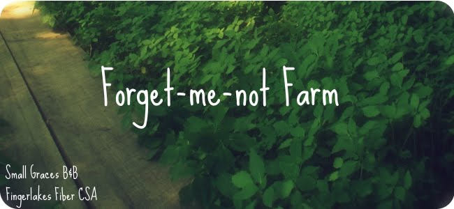 Forget Me Not Farm Fiber CSA