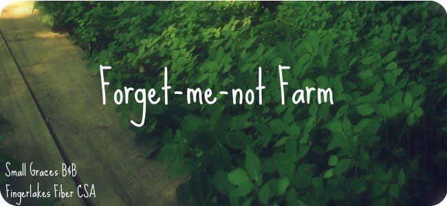 Forget Me Not Farm Fiber CSA