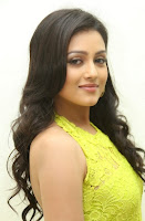 Actress Mishti Chakraborty Picture Gallery in Long Dress at Chinnadana Nee Kosam Audio Launch freshgallery.in6.jpg