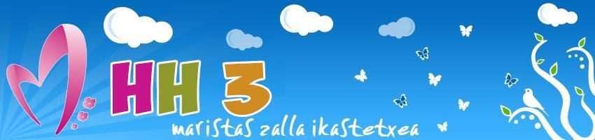 MARISTAS ZALLA IKASTETXEA - HH 3