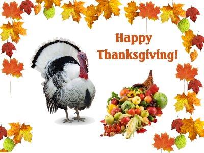 Pavo de Acción de Gracias