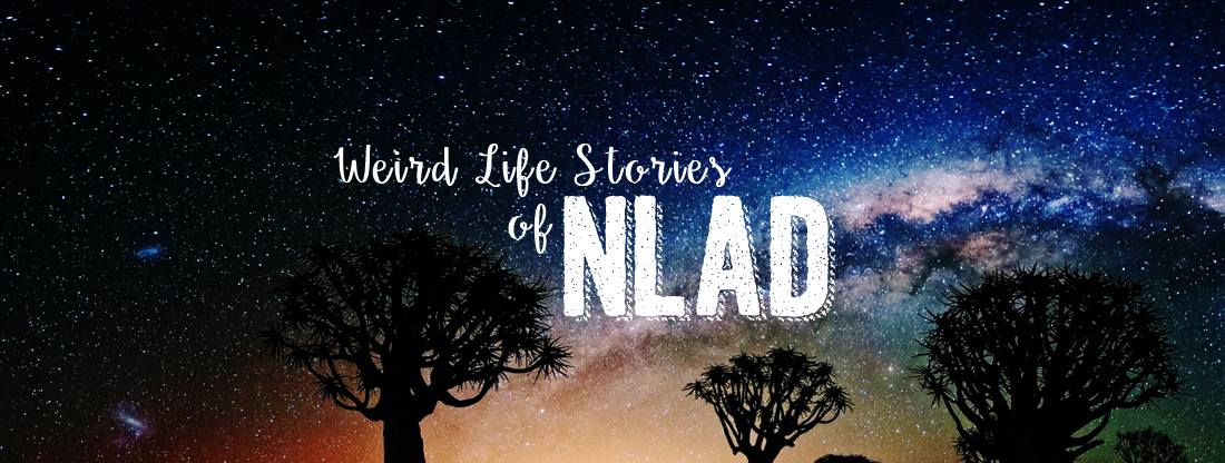 Weird Life Stories of NLAD :)