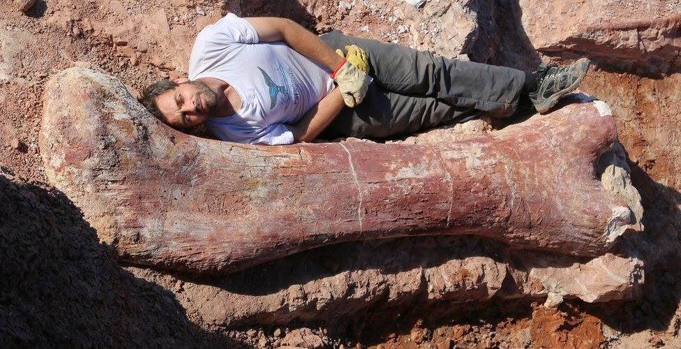 Il più grande dinosauro mai scoperto