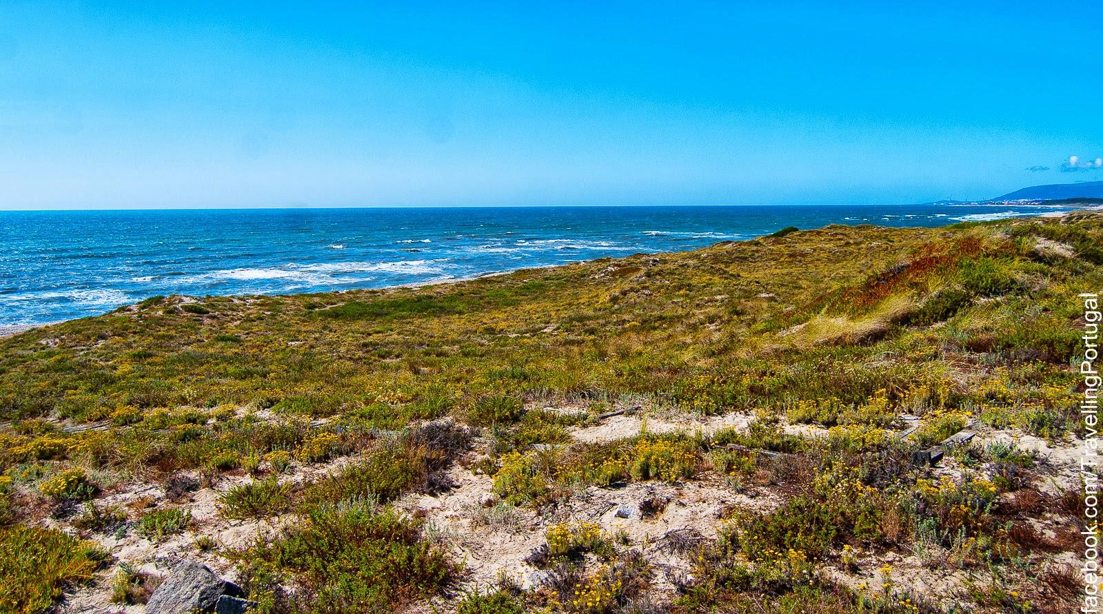 Parque natural do litoral norte turismo en portugal - Natura portugal ...