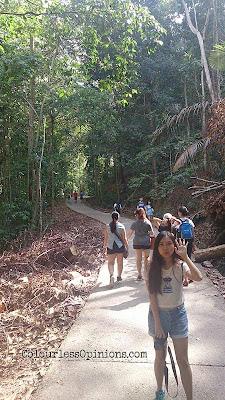 gunung lambak trail