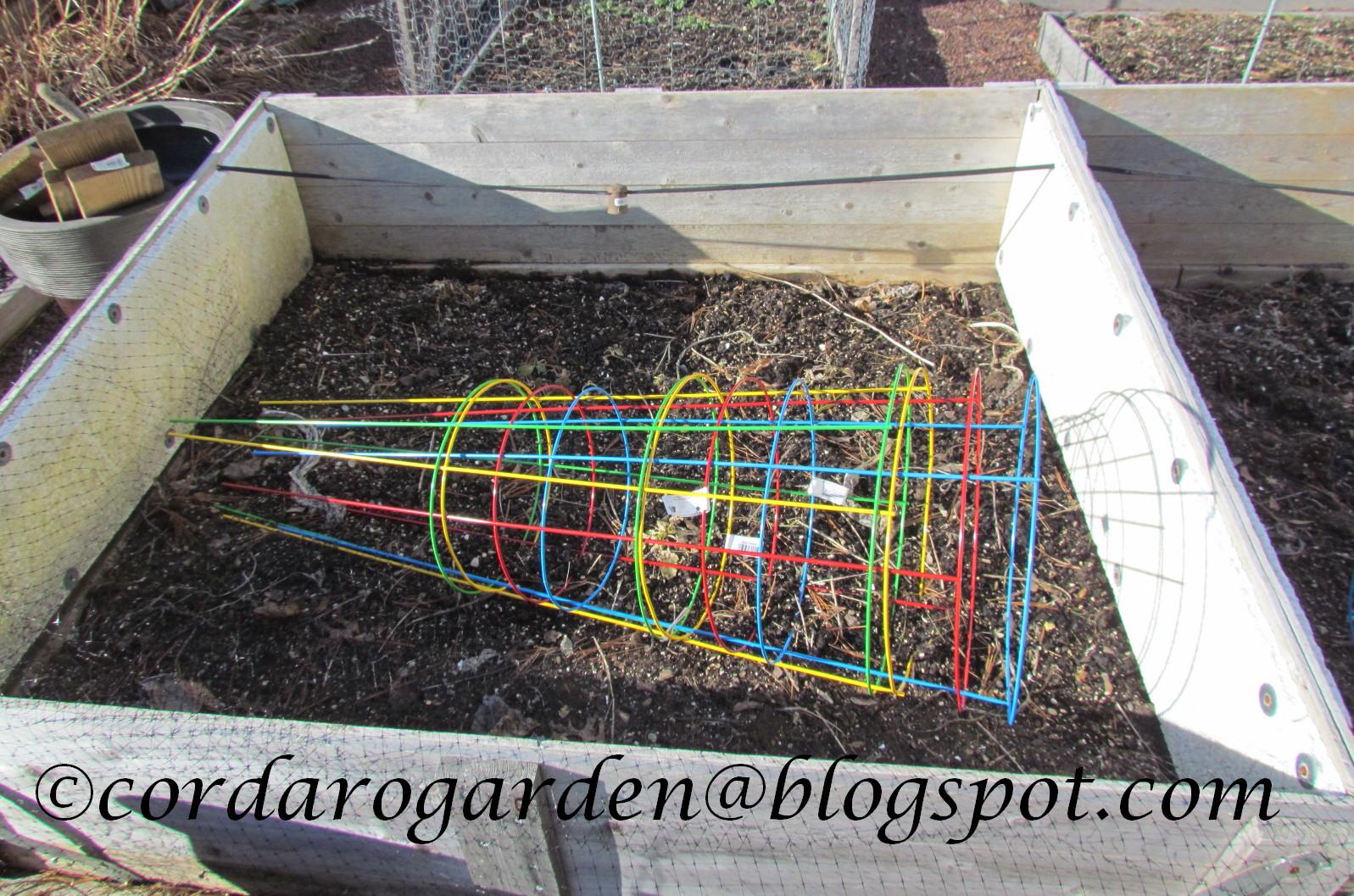 the gardener of eden starting early crops the winter garden