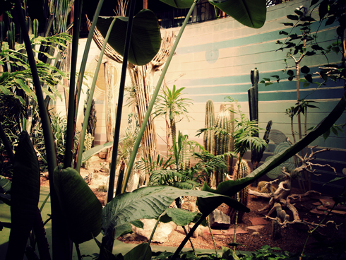 Reptile Gardens Editing Luke