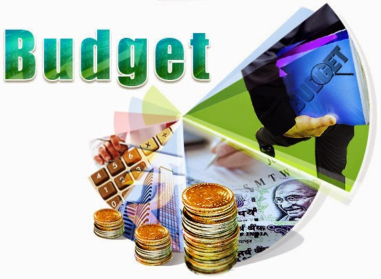 Indian Government Budget 2014-15 Union Budget 2014-15 Related