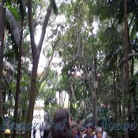 Parque Tenente Siqueira Campos - Trianon