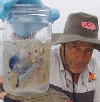 Pinar Yoldas Imagines Future Life Inside The Pacific Trash Vortex Creators