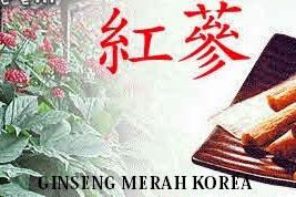 Ginseng Obat Herbal Andalan Korea