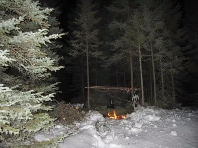 зимний лес и костер