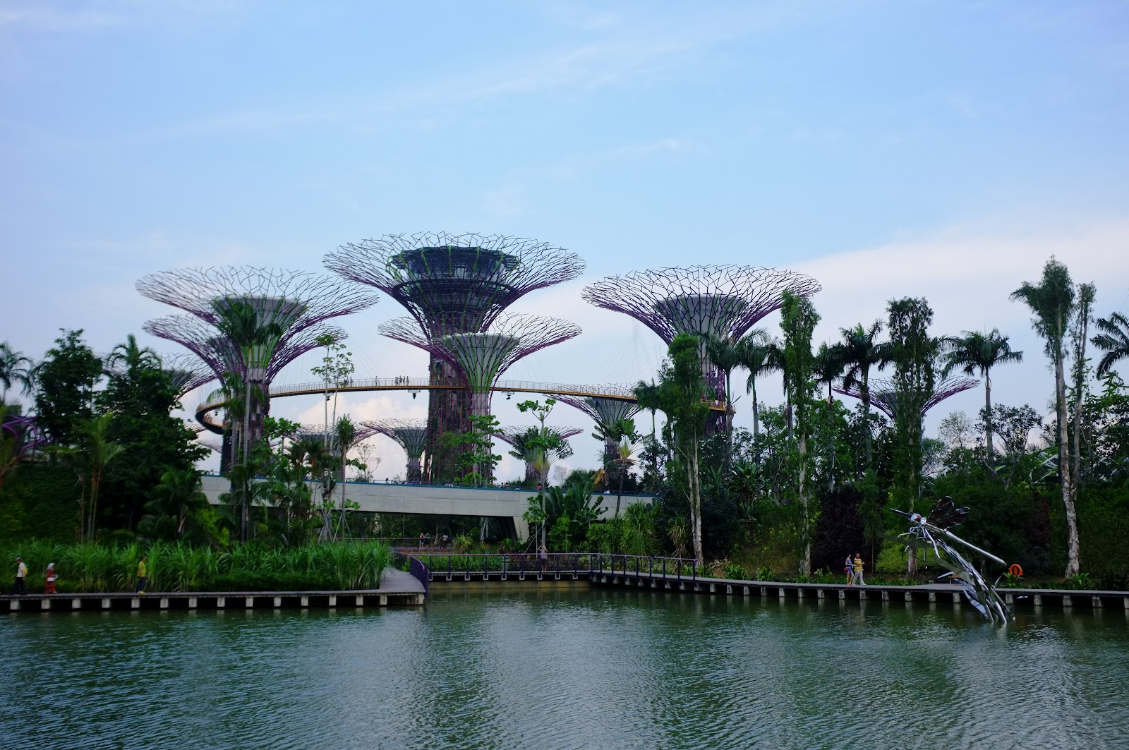Gardens By The Bay Singapore Boston Experience