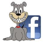 Dogcão no facebook