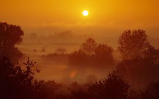 """""""Eu sou a luz do mundo, aquele que Me segue não andará em trevas, mas terá a luz da vida."""""""