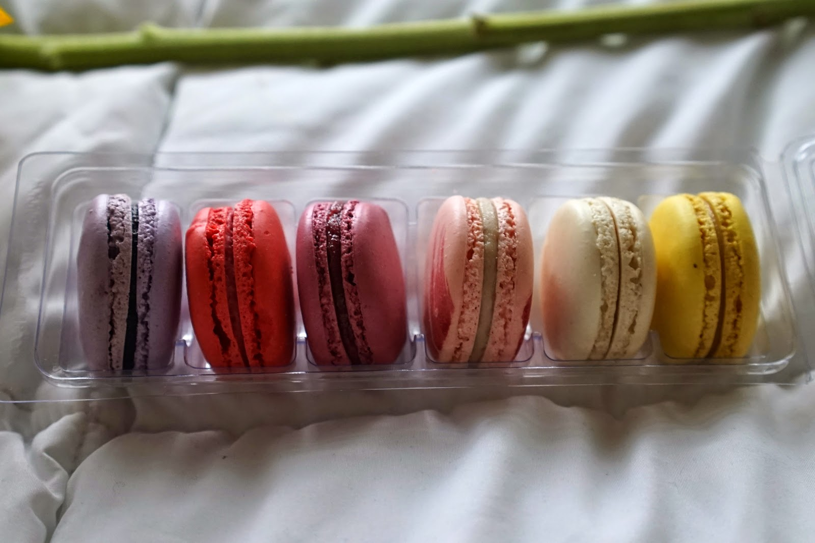 bright fruity macaroons