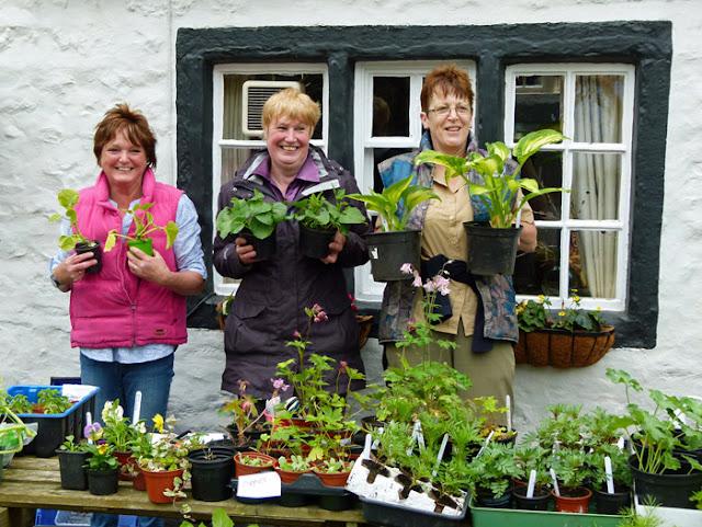 Burton in Lonsdale, open gardens, plant stall
