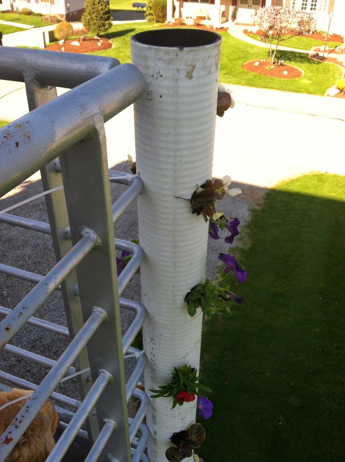 vertical pvc planter