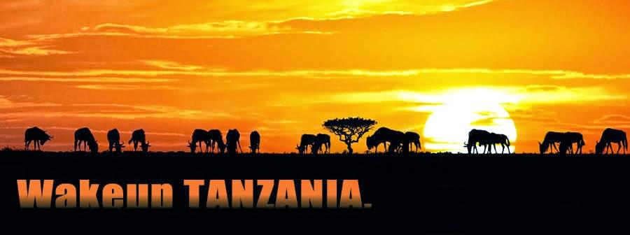 Wake up Tanzania