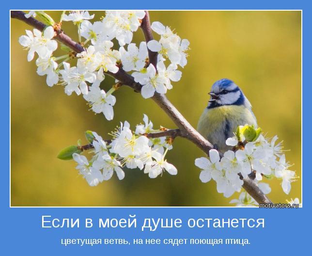 http://4.bp.blogspot.com/-p5t6G4zuFCE/UIzJPmydCJI/AAAAAAAAHbg/jzC7eA6hMhY/s1600/motivator-27067.jpg