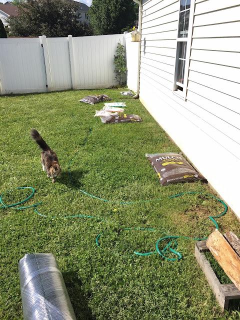 little bit funky how to make a backyard putting green