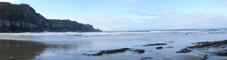 Playa Isla sur en Nueva Zelanda
