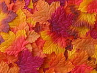Silk Autumn Leaves3