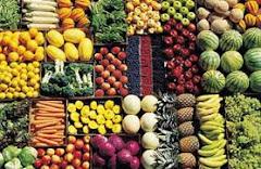 Εγχειρίδιο Βιολογικών Καλλιεργειών