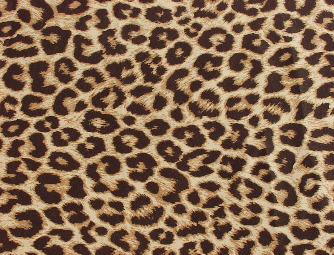 zebra print cheetah leopard giraffe animal posters th purple